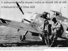 Messerschmitt-Bf-109E3-15.JG52(Kroat)-Green-15-Maripol-AF-Ukraine-May-1942-Revi-32-2000-P34.jpg