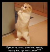 post-15835-0-04475800-1464783995_thumb.jpg