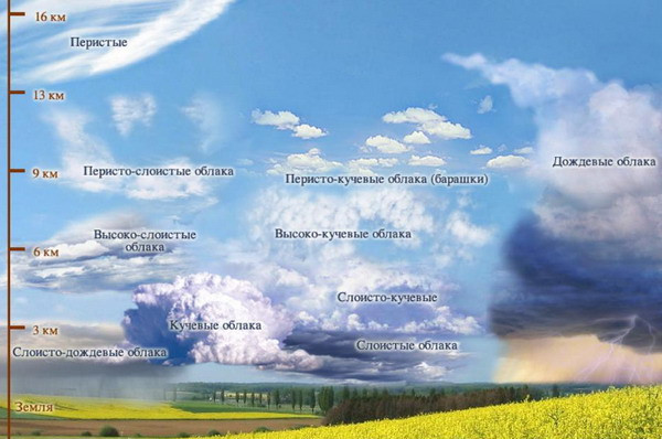 1-Vidi_oblakov_plus_(1).jpg.4be8881c1c335ec9cfd088ccc75b8f2a.jpg