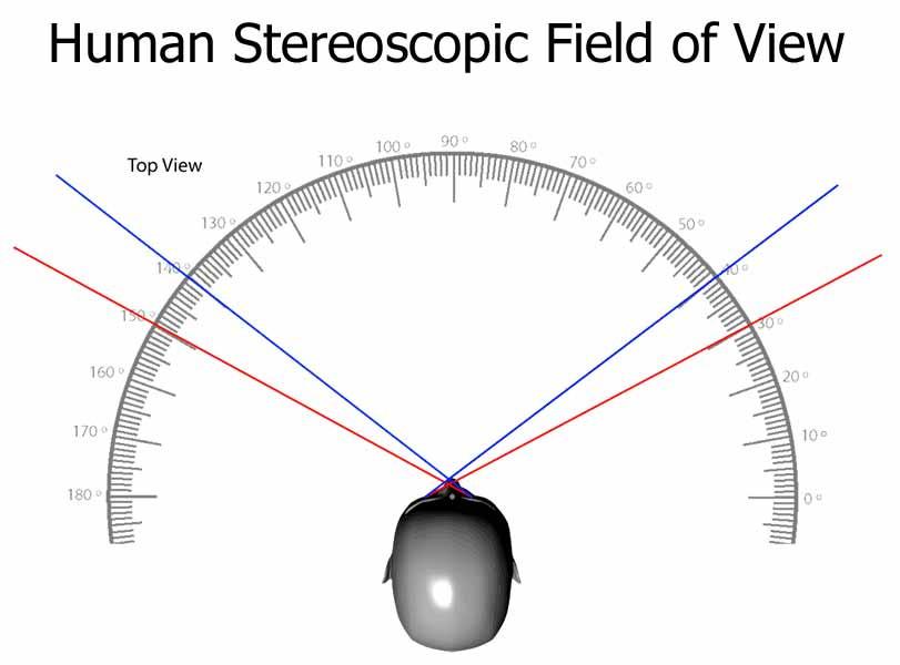 Stereoscopic_Field_of_View.jpg