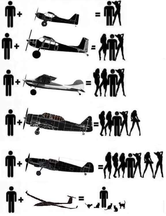 PlanesGirlsCats.jpg.4a36f6fc3bb7c844f92f0c0cdd0816f0.jpg