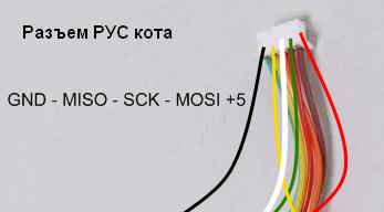 cougar-PYC.png.b26e1b1ea484a04c19a21c4b36146baf.png