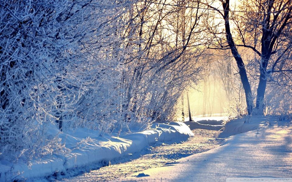 winter_morning_light-wallpaper-960x600.jpg.f956d5295ec2440692d5a14f86d44ffc.jpg