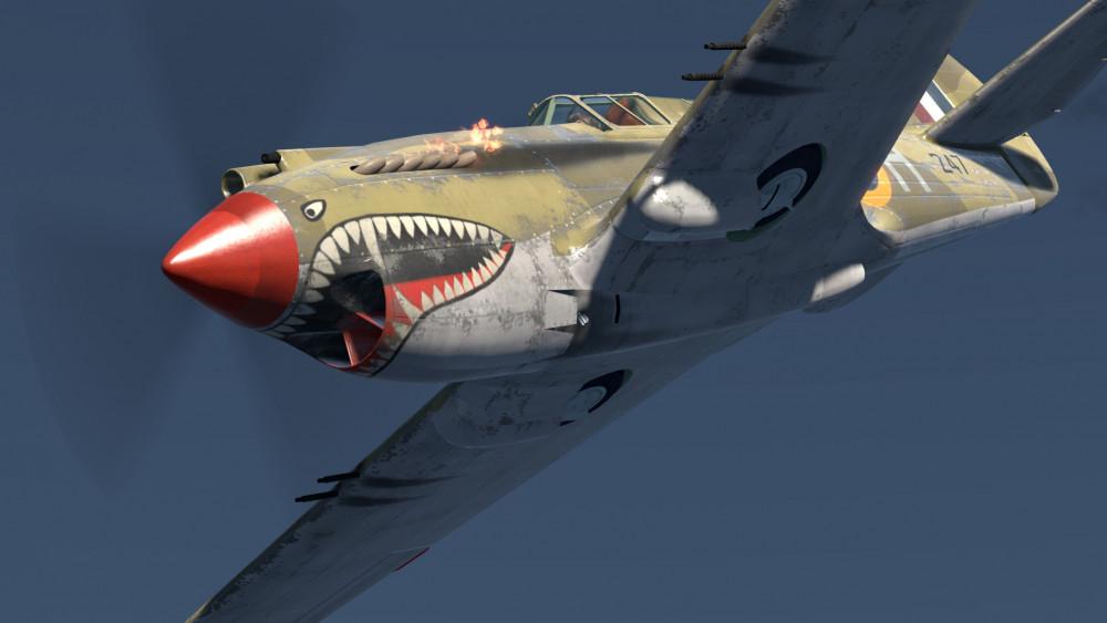 P-40-weathered-02.thumb.jpg.336573e92ea3080afb72efb088aaaf4d.jpg