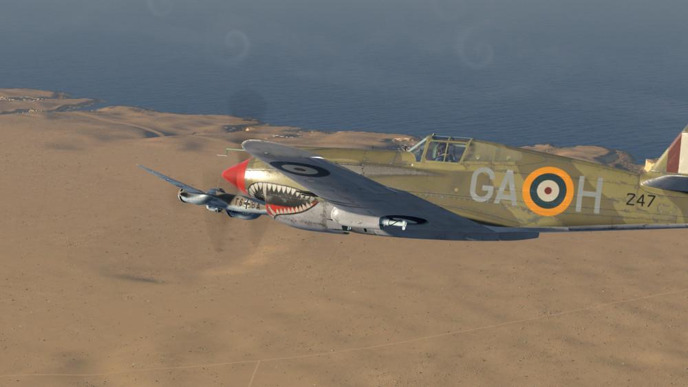 P-40-weathered-03.thumb.jpg.62b378ed4a0bc795d7be26cbf4f576ba.jpg