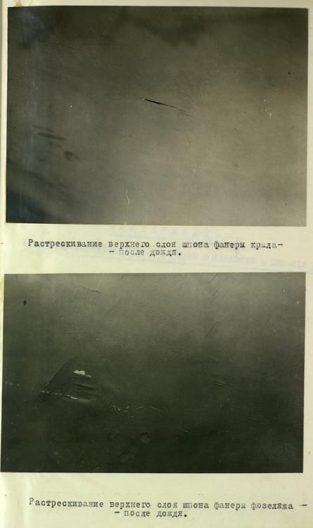2769f5.jpg
