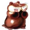 -DED-Hamster